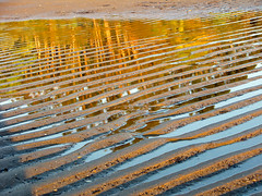 Dawn Ripples (Jack Pal) Tags: original newzealand places vacations downunder2008 mygearandme mygearandmepremium mygearandmebronze blinkagain dblringexcellence tplringexcellence flickrstruereflection1 flickrstruereflection2 flickrstruereflection3 flickrstruereflection4 flickrstruereflection5 eltringexcellence trueexcellence1 rememberthatmomentlevel1 rememberthatmomentlevel2 rememberthatmomentlevel3 westcoastsouthislandflickr soulocreativity3 soulocreativity1 soulocreativity4 soulophotography2