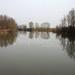 Torrente Agogna - Il bacino a monte della Rimilina