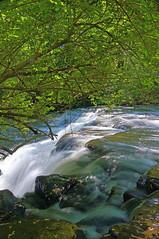 Vertical Postcard (+David+) Tags: waterfall corbettsglen allenscreek postcardfalls rarevertical
