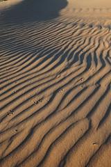 2012_05_27_5770 (Doug's Graphics) Tags: dunes tracks sands mescalero