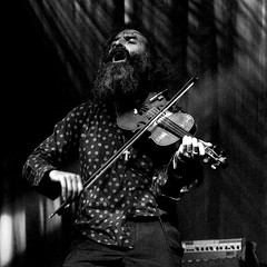 Dirty Three - Warren Ellis (joeri-c) Tags: uk music london festival concert nikon live gig alltomorrowsparties atp gimp violin alexandrapalace nikkor musicfestival warrenellis liveconcert allypally dirtythree digikam 1685 illbeyourmirror d5000 1685mm nikkor1685 nikkor1685mm nikond5000 ibym illbeyourmirrorlondon2012 ibym2012