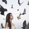 amidst the fall (brianoldham) Tags: broken birds death apocalypse falling brianoldham