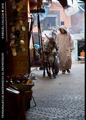 PERSONAJES DE MARRAKECH: EL REPARTIDOR. (Miguel Calleja) Tags: morocco marrakech marruecos souq marroc zoco