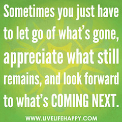 Sometimes you just have to let go of what's go...