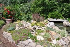 DSC_9668 (miltydotcom) Tags: summer gardens nc meeting 15 reg 2012 ahs morganton irongate msm2012