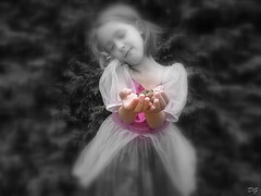Les rves d'une petite princesse. The dreams of a little princess (Amiela40) Tags: rose princess dream prince vert story histoire princesse rve crapaud