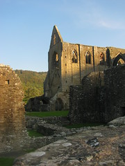 Tintern Abbey (Dave Roberts3) Tags: trees windows building wall wales gwent ruined monmouthshire coth supershot thegalaxy diamondclassphotographer flickrdiamond anticando coth5 sunrays5