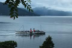 waverley evening (werewegian) Tags: cruise river evening clyde boat ship paddle basin funnel waverley jul12 doonthewatter werewegian