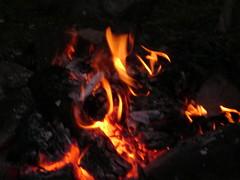 Coals (theogarver) Tags: forest shield saskatchewan boreal staufferlake