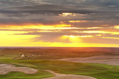 Waiting For a Crack (Northern Straits Photo) Tags: light sunset golden washington farm wa palouse steptoebutte mygearandme northernstraitsphotography