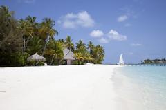 IMG_7909 (Marc Aurel) Tags: ocean sea beach strand island boot hotel boat meer indianocean palm resort insel palmtree maldives palma palme spiaggia isola atoll maldive malediven veligandu indischerozean maldiveislands coralisland indik dhivehiraaje rasdhooatoll koralleninsel 5dmarkii eos5dmarkii lakshadweepsea laccadivesea veliganduislandresort rossatoll lakkadivensee isolacorallina rasduatoll