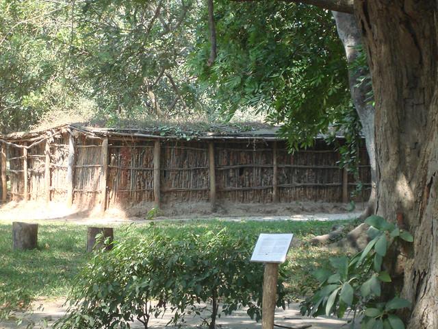 Trad House 4