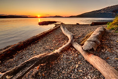 Between Dreaming and Awake, Victoria, BC (Northern Straits Photo) Tags: sunset summer canada nature water beautiful landscape bc britishcolumbia awesome logs victoria top10 sidney mosespoint mygearandme northernstraitsphotography