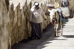 Muslim with a donkey, Jerusalem, Israel -rabe com burro, Jerusalem, Israel (Ilan Ejzykowicz) Tags: gua israel muslim donkey burro  jeruzalem islamic gerusalemme carregando jerusaln   kuds ierusalim herusalem quddus  jeruzslem  jeruzalm  xerusaln oldmuslim jeruzal         musliminjerusalem muslimoldguy donkeycaringwater mulumanocomburro arabwithdonkey  cherusalem  herusal qds  jeruusalemm jeruzalim iarsailim  yrusalem  jerozolma  yerusalemu orelm