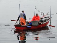 heimkehr vom fischfang (derbeobachterr) Tags: boot ostsee fischer schleswigholstein neustadt norddeutschland fischerboot ostholstein fischerei