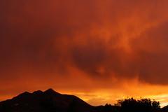 Sunrise 7 22 2016 041 (Az Skies Photography) Tags: sun rise sunrise morning dawn daybreak cloud clouds sky skyline skyscape red orange yellow gold golden salmon black july 22 2016 july222016 7222016 72216 canon eos rebel t2i canoneosrebelt2i eosrebelt2i rio rico arizona az riorico rioricoaz arizonasky arizonaskyscape arizonaskyline arizonasunrise