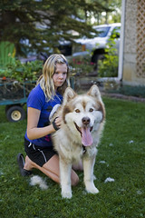 A girl and her dog (wilderness_wanderer) Tags: malamute dog alaskanmalamute