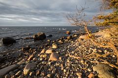 Beach (hansekiki ) Tags: rgen lohme jasmund nationalpark landschaften beach strand ostsee balticsea canon 5dmarkiii zeissdistagont2815mm distagon1528ze distagont2815 ze