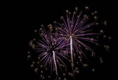_MG_1171 (sdferrell) Tags: dmt fireworks ny