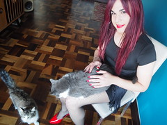2016.06-101 (SamyOliver) Tags: samycd samyoliver samanthaoliver samy samantha dress redhead genderfluid crossdress crossdresser transformista transvestite tranny oliver brazil brazilian cat