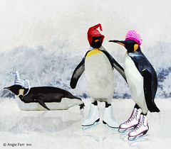 """There's Always One""! (rubyblossom.) Tags: mii challenge no2 penquins skating ice joker funny hats cold fun rubyblossom rubystreasures 2016 premade background"