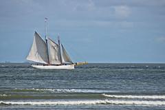 """Lotsenschoner Nr 5 """"Elbe"""" (jezebel_cux) Tags: cuxhaven cuxland elbe elbmndung grimmershrn lotsenschoner segelschiff segelboot"""