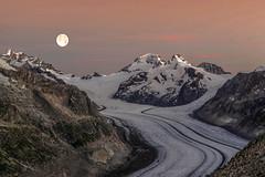 Splendeur de l'Aletsch (Valentin le luron) Tags: 20160823 nikon 800 e valais romandie suisse paysage nature montagne glacier contraste yves paudex lausanne