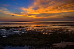 Seagrass Sunset (jfusion61) Tags: florida port st joe bay seagrass sunset summer water coast clouds nikon d810 2470mm landscape tide
