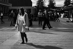 campus-015 (Yvonne Rathbone) Tags: technical 1855mmf3556gvr blackwhite campus monochrome