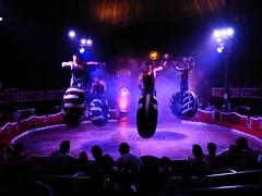 El Circo (18) (calafellvalo) Tags: circocircuscirquezirkusclownspayasosemocionesfantasiamagiacalafelvalo raluy circo zirkus sufrir suspirar fantasa fantasy sigh sueos dreams trume rves circoraluy suspense miedo fear trepidation circus cirque equilibrios payasos clowns trapecistas trapze trapez emociones emotionen emotions passions angst sentimirntos feelings feel affect risas lacht lache laughs mirth merriment magia magie magic calafellvalo art