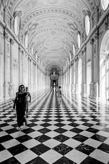 Where's the toilet? (Sgnaps) Tags: reggiadivenariareale torino venaria galleriagrande biancoenero blackandwhite squares scacchi