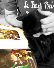 Read a child a book, and you amuse it for a day. Force a child to read, and you entertain it for a lifetime ―right? 🐈 📖 (anokarina) Tags: instagramapp square squareformat iphoneography uploaded:by=instagram cats kitten kitty kitties blackcat pet book read lepetitprince thelittleprince appleiphone instagram colorsplash capitolone seattle washington wa pnw pacificnorthwest