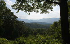 Framing The Smokies (jrussell.1916) Tags: greatsmokymountainsnationalpark mountains trees foilage landscapes green blue tennessee canonefs1755f28is