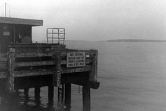 No Diving Within 300 Feet (bac1967) Tags: kodakno2foldingautographicbrownie kodak brownie autographic ilford delta 400 120film ilforddelta400 blackandwhite bw pnw washington pugetsound berrenol beerol beerdeveloper beerfilmdeveloper kodakno2autographicbrownie monochrome monochromefilm lightleaks lightleak edmonds edmondswa ferry terminal ferryterminal edmondsferryterminal pier dock salishsea washingtonstateferries nodiving ferrylanding