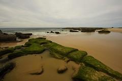 Green Rocks (Paul Hollins (offline - on holidays)) Tags: aus australia bungareenorah newsouthwales norahhead nikond750 nikon1635mmf4 seascape soldiersbeach rocks erosion