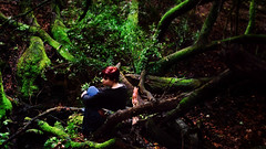 (Ashleigh Rose) Tags: portrait green nature girl contrast forest self moss woods vibrant