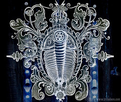 Triumphant Trilobite Steampunk Art  TRILODEON  Tags  art illustration    Trilobite Illustration