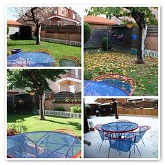 Les 4 saisons du jardin... (LILI 296....!!!) Tags: automne garden table hiver jardin neige t arbre printemps chaise pelouse feuille