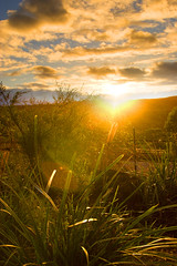 Linden Sunburst (edwinemmerick) Tags: road sky plants sun 20d nature weather clouds canon fence eos linden australia bluemountains nsw sunburst edwin emmerick edwinemmerick