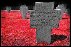 WW II 1945 Zentralfriedhof Leoben Steiermark Styria Austria Copyright 2012 B. Egger :: eu-moto images 6361red2x (:: ru-moto images) Tags: friedhof black photography austria photo nikon war europe gallery russia picture galerie krieg collection ii fotos imagination ww nikkor fx soldat steiermark zentralfriedhof autriche collezione styria 1735mm feiertag weltkrieg sammlung soldatenfriedhof russland opfer النمسا オーストリア дружба фото австрия leoben カメラマン европа fullformat soldatengräber flickrbestpics φωτογραφοσ бернхардэггер rumoto