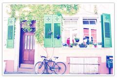 Heidelberg (jadiela) Tags: bike germany pastel ivy shutters heidleberg