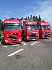 TORELLO TRASPORTI flotte  volvo iveco red (franzkk) Tags: man race speed truck drive volvo cool team model king tn nicola trucker top space transport over super thermo racing line semi renault route lorry camion express trailer bild sporting tuning fh extra trucking magnum routier scania iveco mega frigo refrigerated daf lkw kuhl camiones xf hight torello logistik trasporti caminhoes conducteur spedition haulier stralis cammionneur
