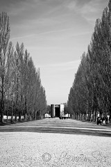 Dachau - The long Alley (LhiannanShee) Tags: bw plants tree church nature architecture germany munich dachau excursion concentrationcamp ringexcellence thegoldenachievement