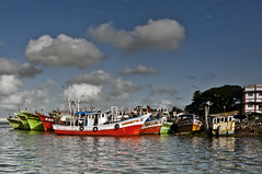 Fishing Trawlers at Fort Kochi (Anoop Negi) Tags: ocean bridge sea portrait india fish water island photography for boat photo fishing media waves photos fort delhi indian bangalore creative going kerala best po parked mumbai cochin anoop kochi trawler ernakulam negi fishery willingdon ezee123 jjournalism fisneries