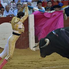 Padilla (Fotomondeo) Tags: españa valencia spain nikon alicante bullfighter bullfight padilla matador torero corridadetoros hogueras d7000 juanjosépadilla