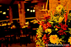 Jantar Harmonizado (Kelly Oliveira - F O T O G R A F I A) Tags: casa flora michelle buzios chef boutique spa jantar vinhos fills josep patanegra llorens i degustao marucco harmonizado importadora restaurantecorcovado