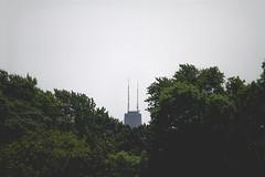 hancock (B R A N D) Tags: city trees shadow chicago building skyscraper canon john 50mm 28mm cover 7d hancock brand 2012 30d mrbluesky illinios ©2012 krisbrand kristoferbrand