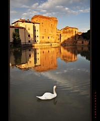 Tuscany (Jambo Jambo) Tags: italy panorama mill landscape swan nikon italia tuscany toscana watermill mulino cigno monteronidarbia mulinoadacqua d5000 nikonflickraward jambojambo