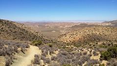 view from ryan mountain (Benzadrine) Tags: california ca mountains cali desert hiking joshuatree highdesert vista iphone joshuatreenationalpark ryanmountain