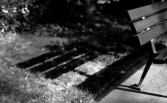 the bench  | explore July 10 #341 (Jack from Paris) Tags: bw paris detail nature bench square lens 50mm prime noir bokeh f14 jardin monochrom et blanc banc parisien nikkorafs50mmf14g nikond800e jpr0085d800e
